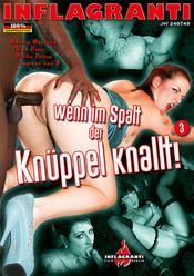 Cover von 'Wenn im Spalt der Knüppel knallt! 3'