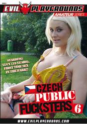 Cover von 'Czech Public Fucksters 6'