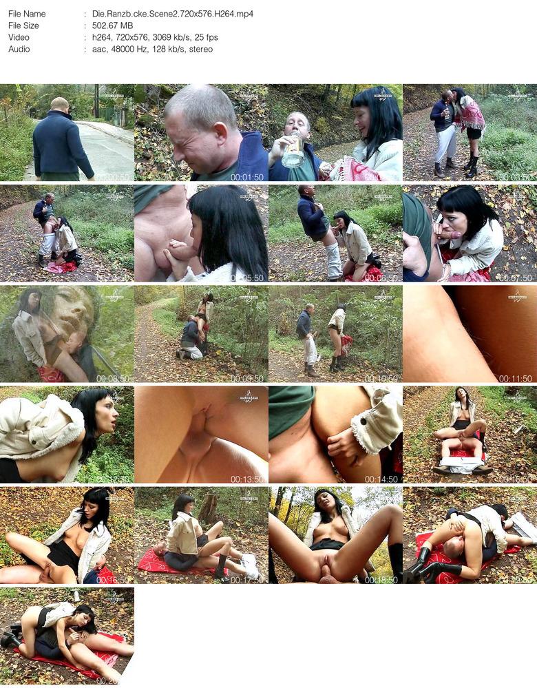 public disgrace com sexfilm mit handlung