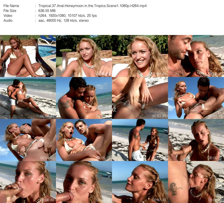 Anal Honeymoon In The Tropics Porn Videos Pornhubcom