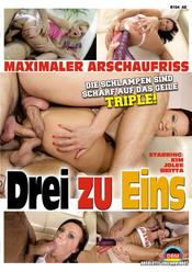 Cover von 'Drei zu Eins'