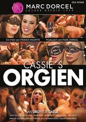 Cover von 'Cassie's Orgien'