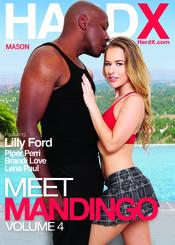 Cover von 'Meet Mandingo 4'