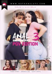 Anal Encounters 3 - POV Edition