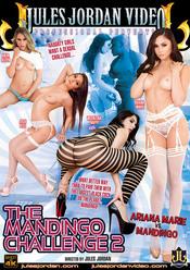 Cover von 'The Mandingo Challenge 2'