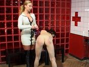 Domination: Domina Games 8
